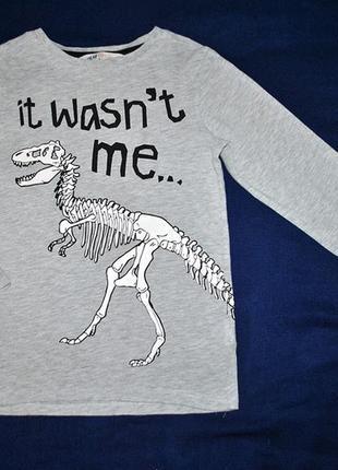 Реглан с динозавром и машинкой р.110/1163 фото