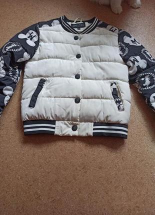 Красивая демисезонная куртка с мики