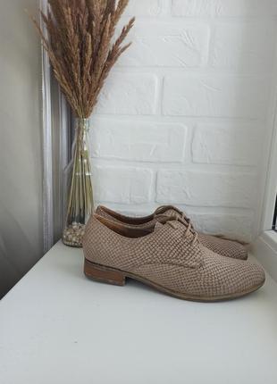 Шикарні туфлі оксфорды туфли