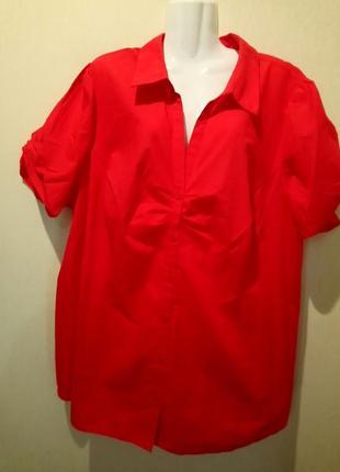 🌺 🌿 🍃 блуза большой размер🍃🌿🌺