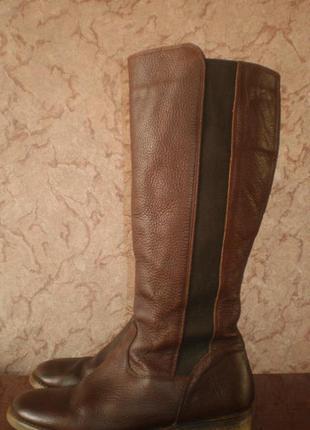 Кожаные высокие сапоги,  next (некст) европейка, 41р. стелька 27см. для пухлых ножек