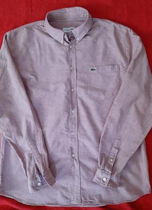 Брендовая рубашка сорочка с длинным рукавом lacoste