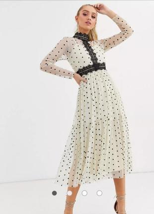Платье кремовое миди в черный горох с сеткой и кружевом