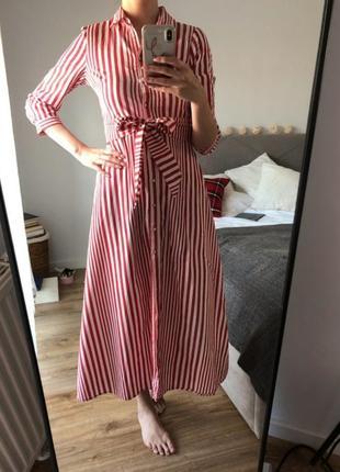 Платье рубашка h&m на пуговицах в полоску с поясом