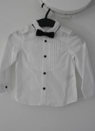 Рубашка с бабочкой на модника, р.92
