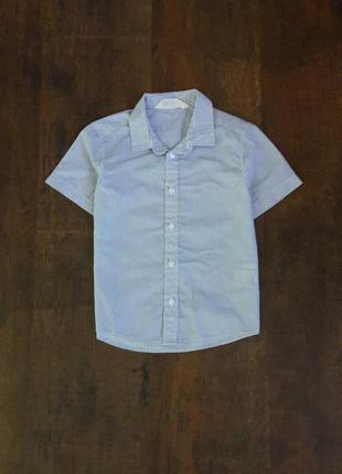 Рубашка с коротким рукавом h&m мальчику 4-5лет