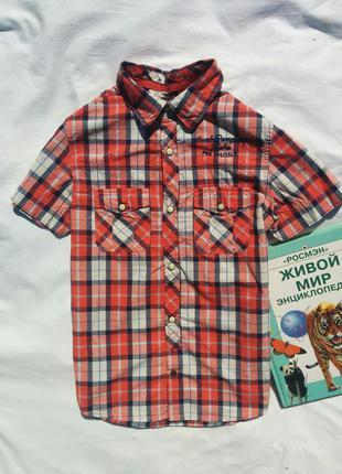 Рубашка h&m на 9-10лет