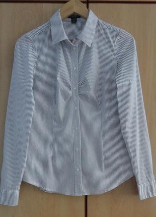 Супер брендовая рубашка блуза блузка хлопок