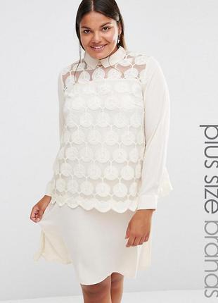Платье с воротником и кружевом lovedrobe  для asos,р-р 22