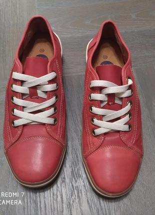 Кожаные туфли с перфорацией.