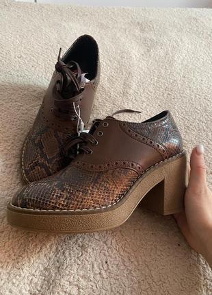 Кожаные ботинки коричневые ботинки на шнуровке ботильоны в змеиный принт geox ботинки на толстой подошве