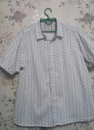 Хлопковая рубашка xxl