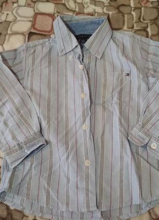 Классная рубашка от tommy hilfiger, p. 2 - 3 года
