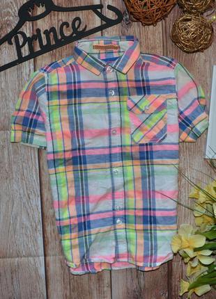 Классная рубаха next 1-1.5 года (86) будет 2-3 года