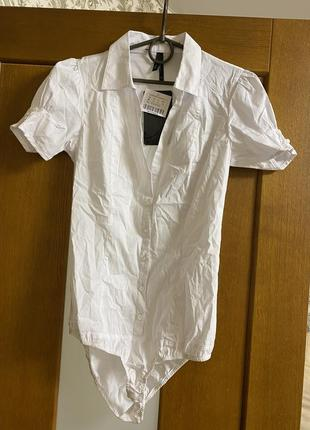 Бодик рубашка m