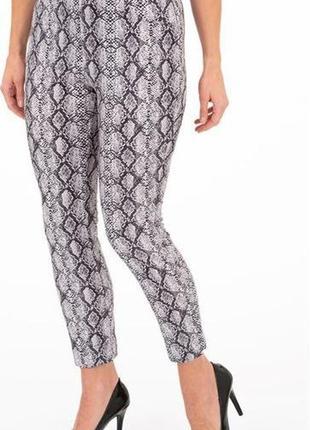 Стильные брюки принт питон klass