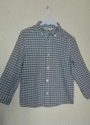 Гарненька сорочка від  h&m, на 5-6 рочків, іспанія