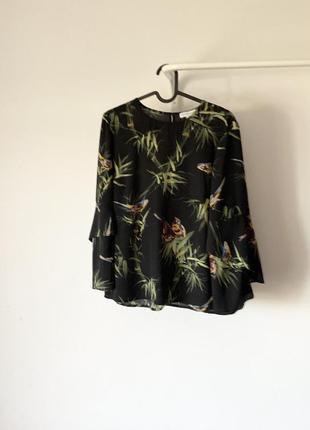 Блуза з тропічними пташками