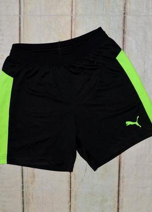 Футбольные шорты puma на 11-12 лет