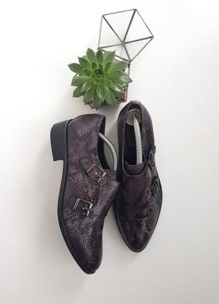 Туфли броги оксфорды змеиный принт