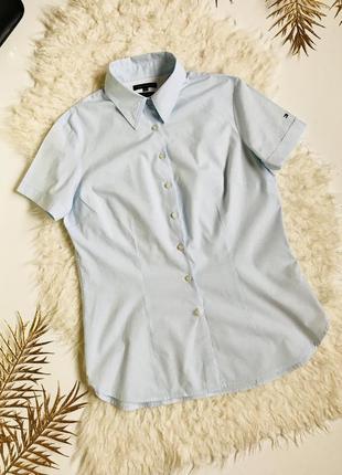 Небесного-голубая натуральная рубашка tommy hilfiger с коротким рукавом