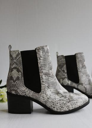 Новые крутые ботинки челси (вставки-резинки) с имитацией змеиной кожи