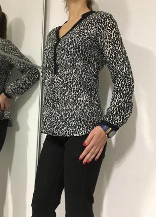 Кофточка, блуза, кошачий принт, zara