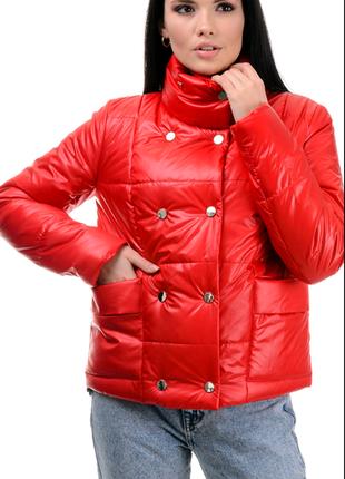Куртка коротка, ветровка