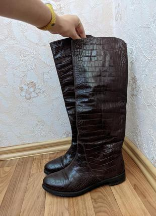 Сапоги демисезонные, лаковая кожа, 39 размер