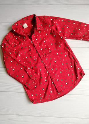 Рубашка h&m, размер 3-4года
