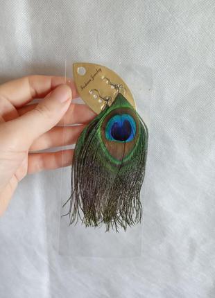 Сережки пір'я павичеве око