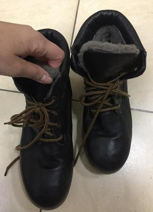 Зимние сапоги ботинки clarks ecco