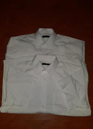 Рубашки белые короткий рукав