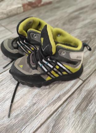 Фирменные ьерм кроссовки adidas