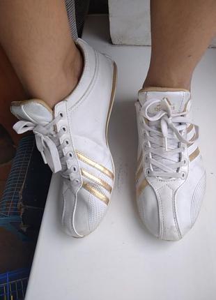 Adidas кроссовки 39 размер 25 см стелька