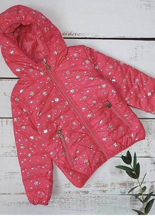 Куртки демисезонные для девочек sincere 4-12 лет (1858). венгрия