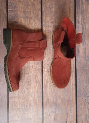Сапоги, ботинки , челси ecco elaine оригинал