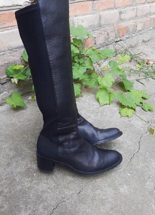 Стильные кожаные брендовые ботфорты чулки