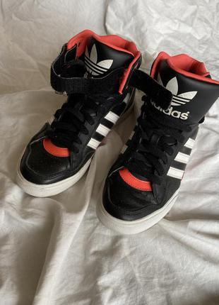 Високі кеди adidas на платформі 3см