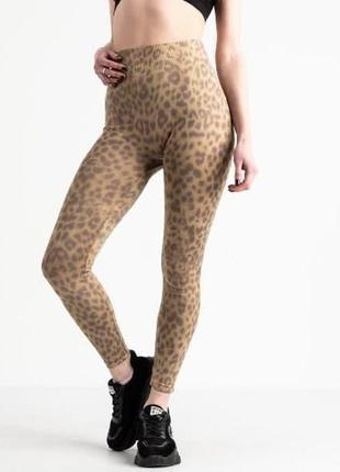 Лосины леопардовые