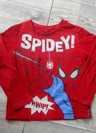 Кофта с принтом spiderman