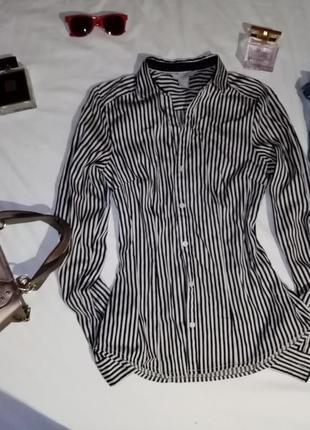 Блуза, блузка, рубашка, сорочка