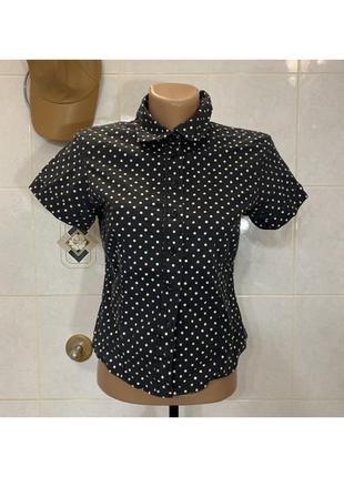 Рубашка в горошек черная dorothy perkins с воротником с коротким рукавом на пуговицах