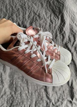 Кросівки adidas superstar