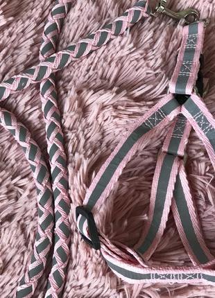Розовый светоотражающий поводок, шлейка, с ошейником для кота или маленькой собаки