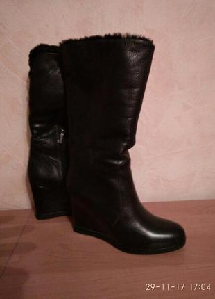 Зимние кожаные сапоги сarlo рazolini (оригинал)