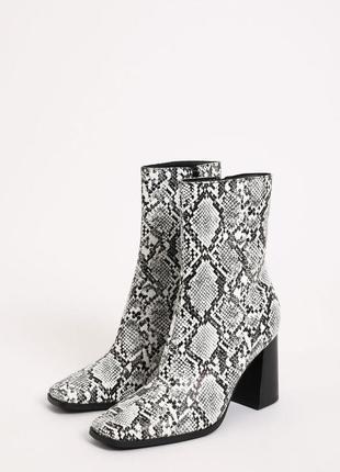 Чоботи ботинки ботінки сапоги  на каблуку  сапоги ботильйони питон змея змеиный принт зміїний питон пітон