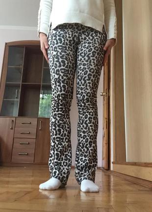 Лосины штаны с леопардовым принтом