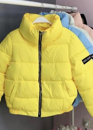 Куртка 🥰🥰🥰