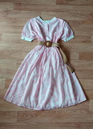 Платье миди на пуговицах хлопок сукня міді